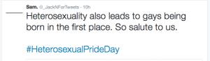 Heterosexual Pride Day