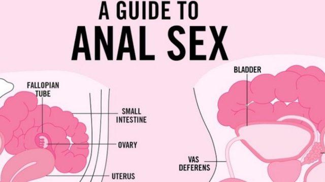 engel anal sex sex og porn vid