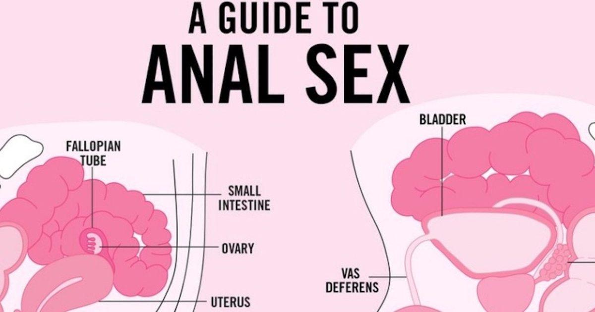 En begynder guide til anal sex