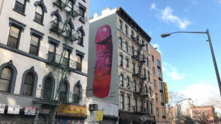 Four-Story-Tall Penis Painting Erected in New York City