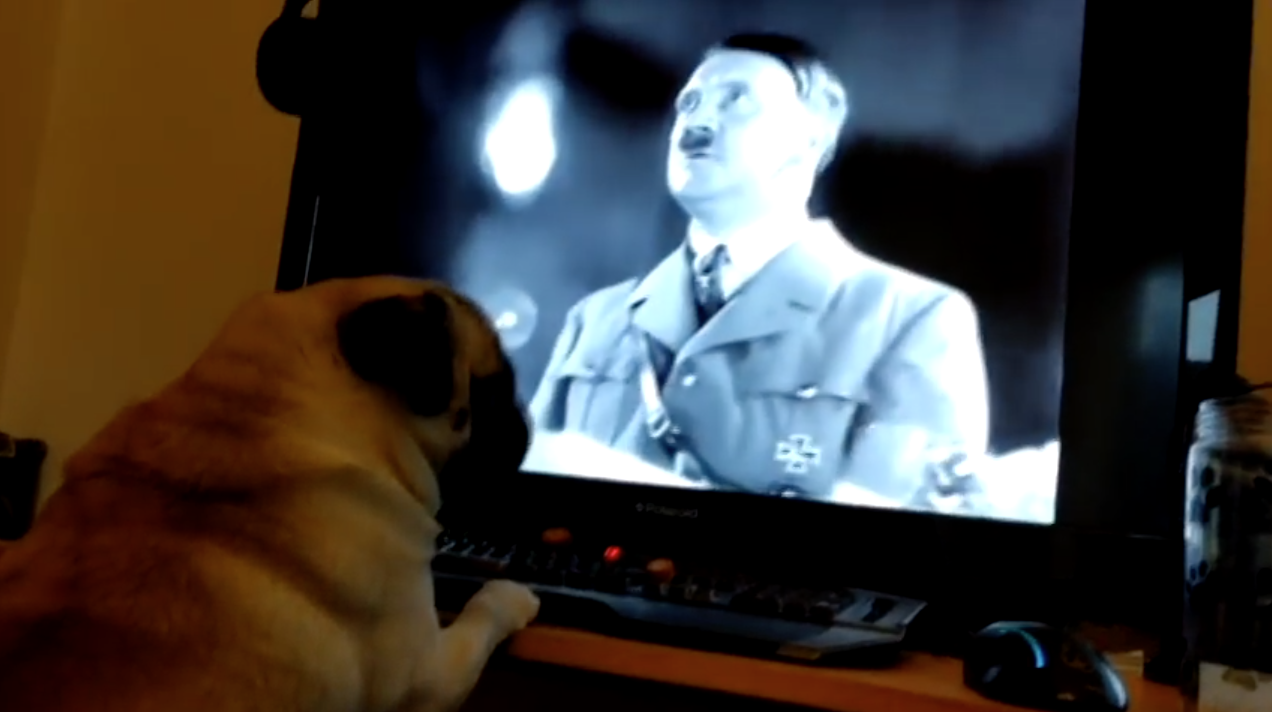"""YouTuber Found Guilty After Nazi Pug Video Deemed """"Grossly Offensive"""""""