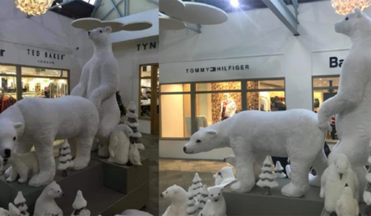 Sexy Holiday Polar Bear Display Shocks Shoppers at Mall