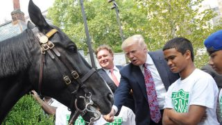 President Trump Deems Kentucky Derby Result As 'Political Correctness'